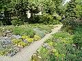 Botanischer Garten Freiburg - DSC06442.jpg