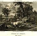 Bovinet - Paysage et animaux.jpg