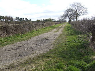 Norfolk headless body - Brake Hill Drove, western end