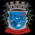 Brasão da Estância Turística de Pereira Barreto.png