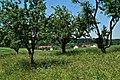 Bretten Ruit hinter Bäumen - panoramio.jpg