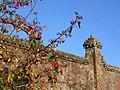 Brick Wall, Moot Gardens, Downton - geograph.org.uk - 313246.jpg