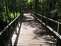 Bridge over Moore's Creek in Pender County, NC IMG 4464.JPG