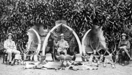 British Governor Sir Hesketh Bell with hunting trophies in Uganda, 1908.png
