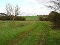 Bronze Age settlement, Plumpton Plain - geograph.org.uk - 71567.jpg
