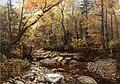 Brook in Autumn, Keene Valley, Adirondacks by John Lee Fitch.jpg