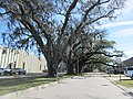 Brookhollow Esplanade Oaks, Jefferson Parish, Louisiana, January 2021 02.jpg