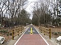 Bruce Freeman Rail Trail, South Chelmsford MA.jpg