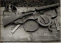Brzostrelka Hellriegel - 1.jpg