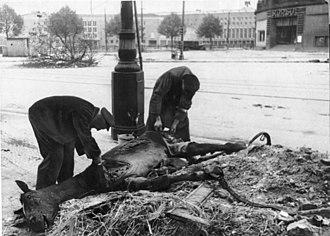 Scavenger - Men scavenging a dead horse during World War II (at the end of the Battle of Berlin), on Manfred-von-Richthofen-Straße in Tempelhof borough, 1945