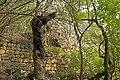 Burgruine Stallegg 08 2015-08.jpg