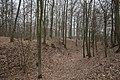 Burgstall Bildhausen-9416.jpg