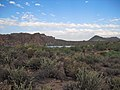 Butcher Jones Off-Trail, Tonto National Forest, Fort McDowell, AZ 85264, USA - panoramio (10).jpg