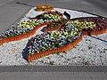 Butterfly at Fő square, Biatorbágy, Hungary.jpg