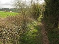 Byway to Chartham Downs - geograph.org.uk - 1805948.jpg