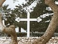 CRC Cross white Founders MtEcclesia.jpg