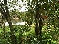 Cabreúva - State of São Paulo, Brazil - panoramio (11).jpg