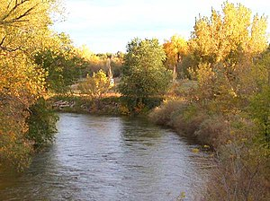 Cache La Poudre River as it flows through northern Fort Collins, Colorado.jpg