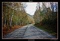 Camino a Suárbol (1-11-2011) - panoramio.jpg