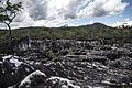 Canyos - Parque Nacional da Chapada dos Veadeiros.jpg