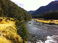 Caples river and track.jpg