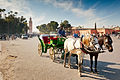 Cart on Marrakesh Djemaa el Fna square.jpg