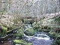 Castle Burn, Loch Ard Forest - geograph.org.uk - 126998.jpg