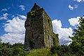 Castles of Munster, Carrignacurra, Cork (2) - geograph.org.uk - 1392902.jpg