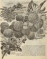 Catalogue of the Orange County Nurseries (1896) (20550088131).jpg