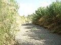 "Cauce ""Riera de la Boella"" - panoramio.jpg"