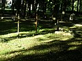 Cemetery in Brętowo - panoramio - Sławek Zawadzki (16).jpg