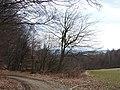 Cesta z Jahodná - Gombárov kút - panoramio.jpg