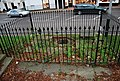 Chalybeate Spring - geograph.org.uk - 1088126.jpg