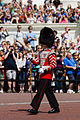 Changing the guard (14918900901).jpg