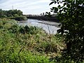Channelsea River - geograph.org.uk - 202632.jpg