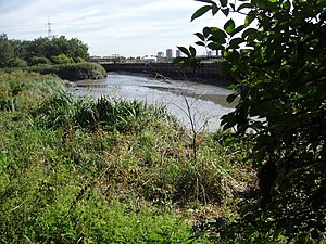 Channelsea River - Channelsea River near Mill Meads in 2005