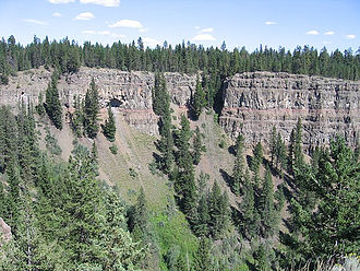 Chilcotin Group - More basalt lava flows and trees in Chasm Provincial Park