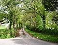 Chawleigh - a lane by The Barton - geograph.org.uk - 1278153.jpg