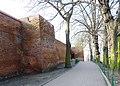 Chełmno - dawne mury obronne miasta - panoramio (3).jpg