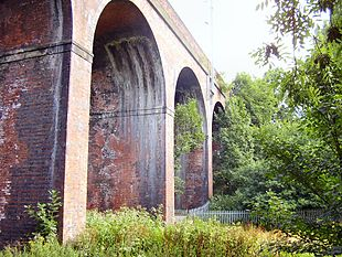 Part of the seven arches railway viaduct on Ladybridge Road