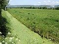 Cheddar Moor - geograph.org.uk - 457258.jpg