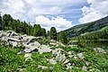 Chemalsky District, Altai Republic, Russia - panoramio (27).jpg