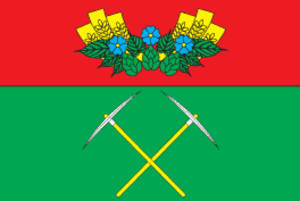 Cherniakhiv Raion - Image: Chernahivskiy rayon prapor
