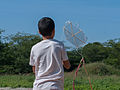 Child playing with a kite.jpg