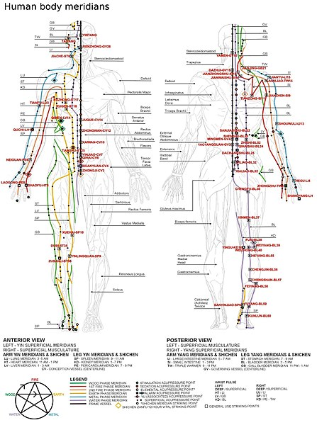 Body Type Chart: Chinese meridians.JPG - Wikimedia Commons,Chart