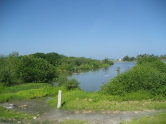 Ciénaga Grande de Santa Marta - Image: Cienaga 6
