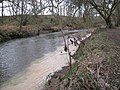 Clay waste polluting the Teign (1-2) - geograph.org.uk - 1730540.jpg