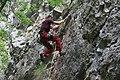 Climbing (4627073199).jpg