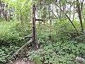 Cmentarz w Pasymiu - panoramio.jpg