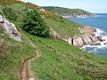Coast path at Old Mill Bay - geograph.org.uk - 811657.jpg